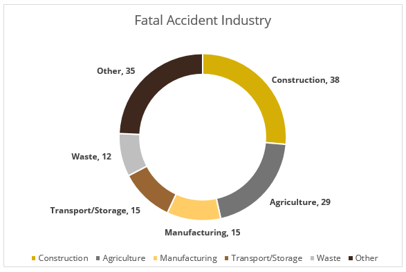 Fatal Accident pie chart