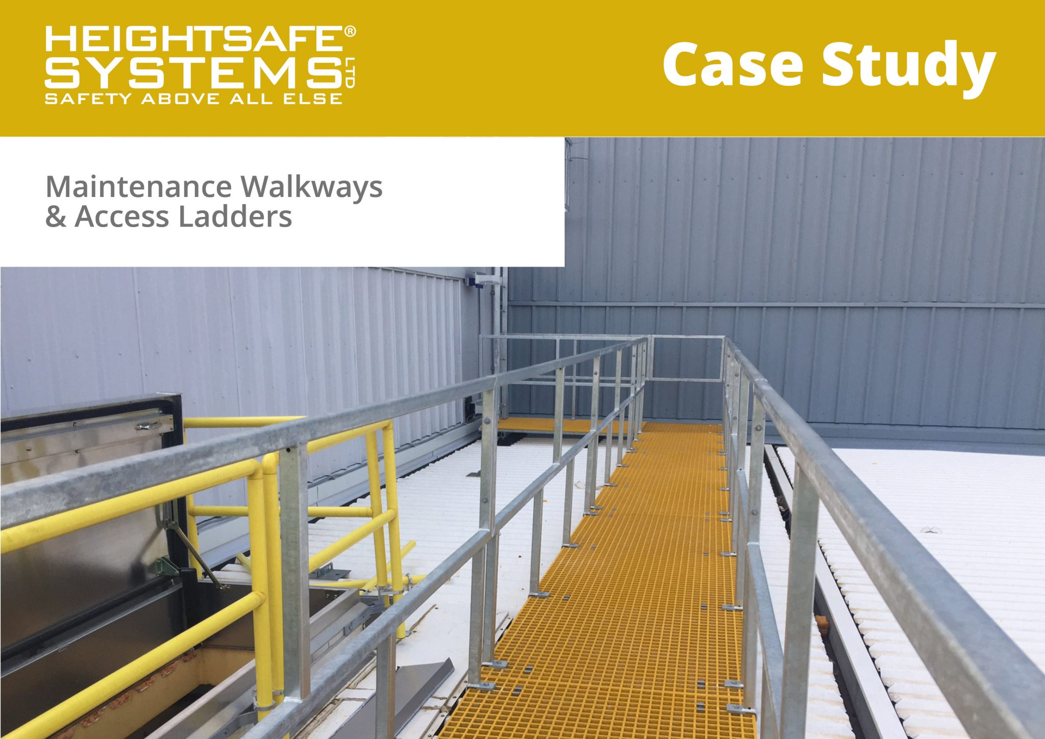 Maintenance Walkways & Access Ladders