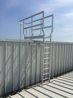 Fall Arrest Access Ladder Systems