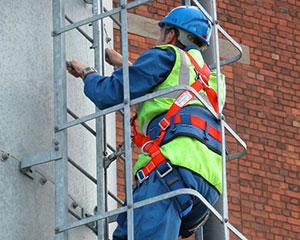 Fall Arrest Ladders